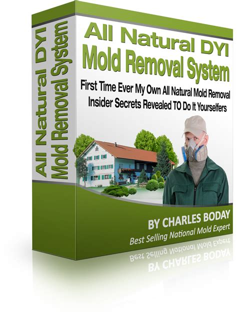 Remove Mildew From Carpet by Diy Mold Removal Diy Wiki