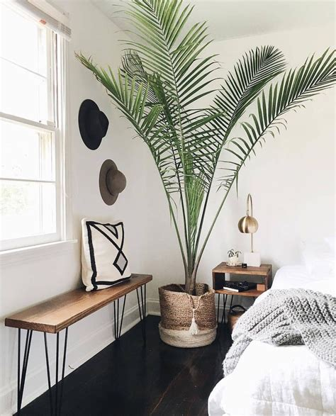 palm tree decor for bedroom 25 best ideas about palm tree decorations on pinterest