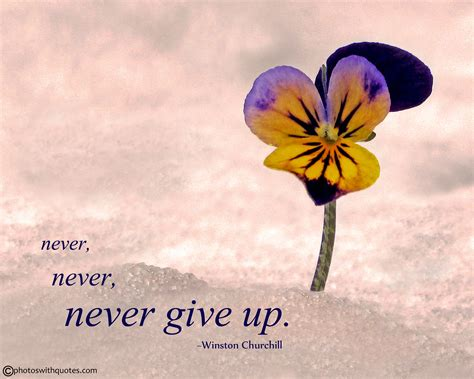 Never Give Up Quote - Free Print and Wallpaper - Life Quote