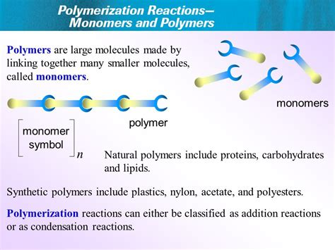 carbohydrates lipids and proteins are classified as polymers are large molecules made by linking together many