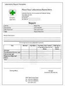 Chemistry Lab Report Template Word lab report template writing word excel format