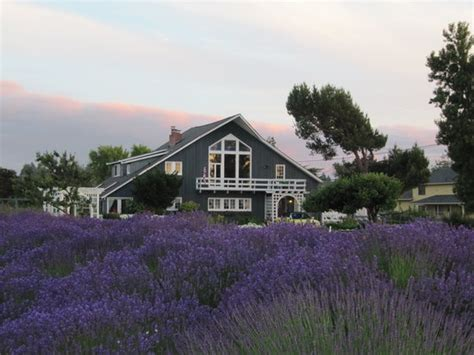 bed and breakfast sequim wa the dungeness barn house bed and breakfast sequim wa