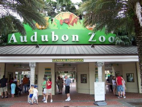 audubon zoo  orleans