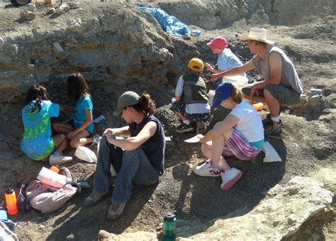 Dig Dig wyoming dinosaur center dig into paleontology