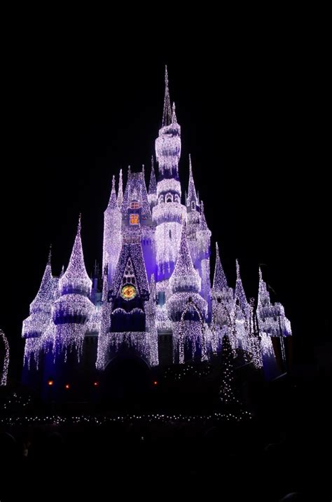 review a frozen holiday wish at the magic kingdom