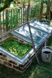 Kitchen Window Planter Box - diy mini greenhouse my honeys place