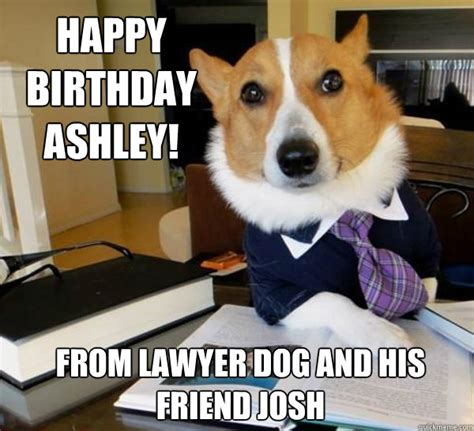 Lawyer Dog Memes - happy birthday ashley from lawyer dog and his friend josh