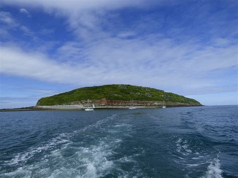 sea fishing boat trips anglesey puffin island picture of starida puffin island cruises