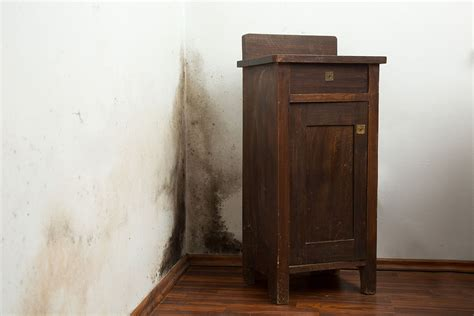 umidita in casa come eliminare l umidit 224 in casa ristruttura con made
