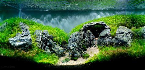 aquascape with rocks rocks for aquascaping audidatlevante