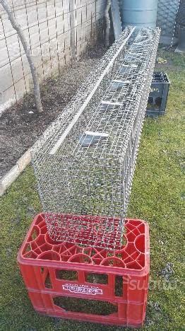 gabbia allevamento conigli batteria gabbia allevamento posot class