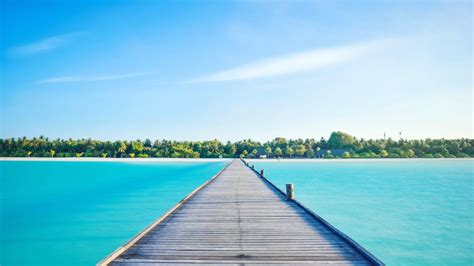 holiday island resort vilamendhoo holidaycheck alif