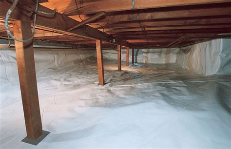 crawl space basement crawl space mold where it comes from identifying why crawl spaces grow mold how to it