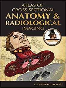 cross sectional anatomy book atlas of cross sectional anatomy and radiological imaging