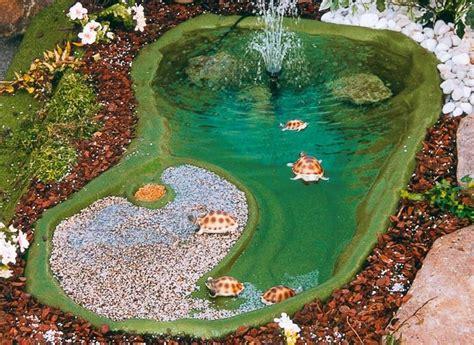 vasche per tartarughe d acqua 17 migliori idee su laghetto per tartarughe su