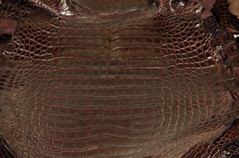 alligator skin upholstery alligator leather wholesale alligator skins for