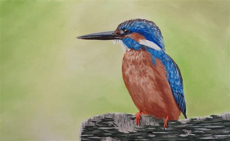 acrylic painting kingfisher how to paint a kingfisher in acrylic lessons