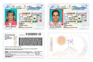 tennessee drivers license template tennessee offender driver s license bill rep matthew