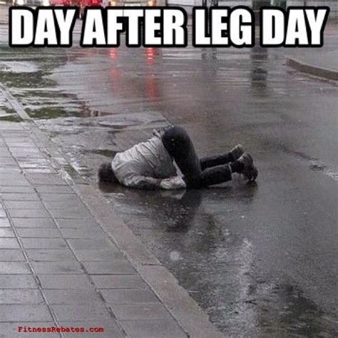 Leg Day Meme - best 25 after leg day meme ideas on pinterest leg day