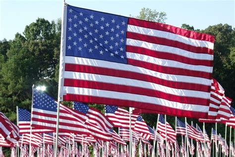 images of the american flag fotobella today is flag day