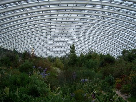 National Botanical Garden Of Wales The Great Glasshouse National Botanic Gardens Of Wales