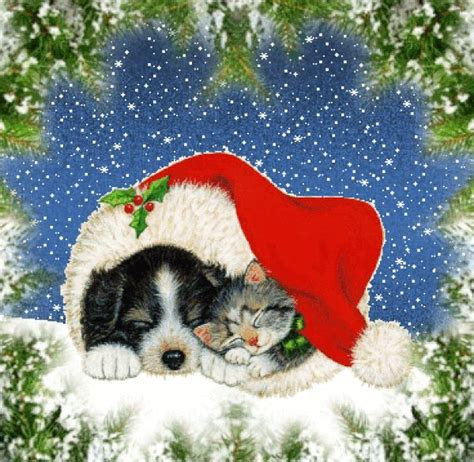 christmas animals animated 130 best images about animation tierischer winter on