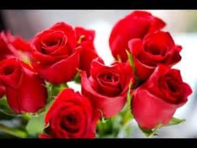 imagenes de rosas rojas para mi amor apexwallpaperscom hechizo de las rosas rojas para atraer el amor