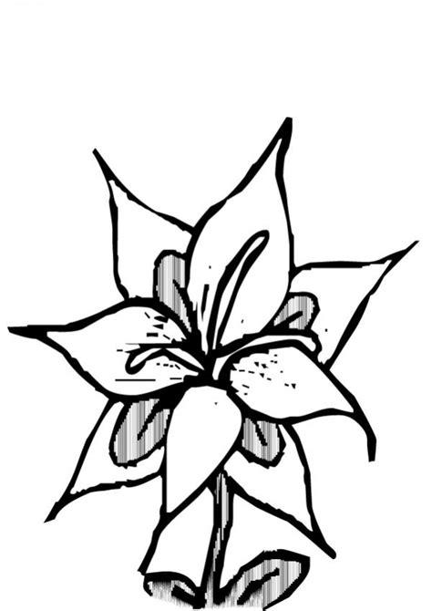 imagenes para uñas dibujos para colorear flor n 176 23 es hellokids com