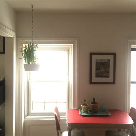 hang things on wall without holes how to hang things from ceiling without holes hbm