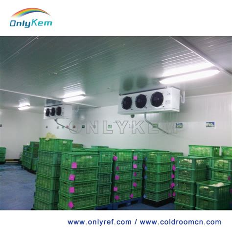 room cooler store apple cold storage room for fruits cold store buy fruits