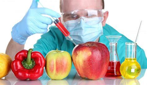 alimentos transgenicos ejemplos de alimentos transg 233 nicos
