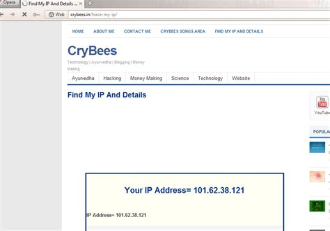 Address Finder Api Find Your Ip Adress And Details With Php Crybees Ip Address Finder Api Jees K Denny