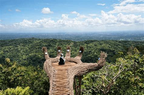 hutan pinus pengger dlingo tempat wisata bantul