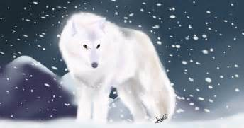 Arctic wolf by feateon on deviantart