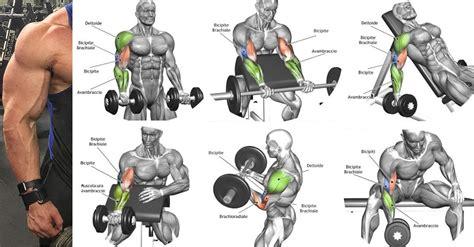 best exercises for big biceps best biceps workout for the best biceps exercises for mass