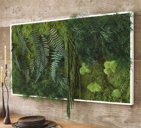 fern decor fern and moss wall art the green head