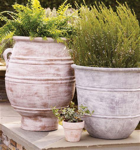 terra cotta planters terra cotta planters 遖 container planting