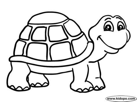 lps turtle coloring pages 316 best animal coloring pages images on pinterest