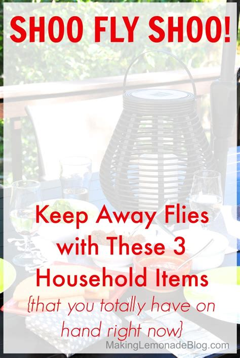 How To Keep Flies Away From Porch how to keep flies away with 3 things you at home lemonade