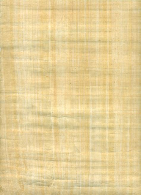 blank papyrus paper