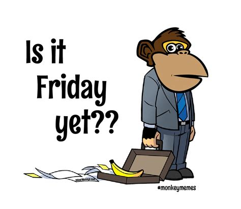 Is It Friday Yet Meme - is it friday yet i find funny pinterest monkey