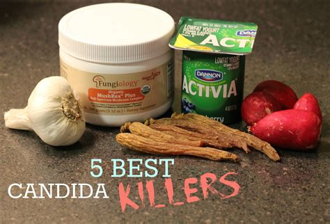 easiest to 5 best foods to kill candida the unextreme