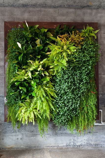 indoor herb garden wall create your own vertical garden living walls and