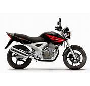Newly Launching Honda CBX 250 Twister Specification Images