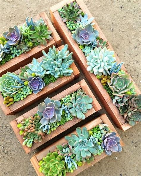 Succulent Planters Ideas by 1214 Best Images About Endless Succulent Ideas On