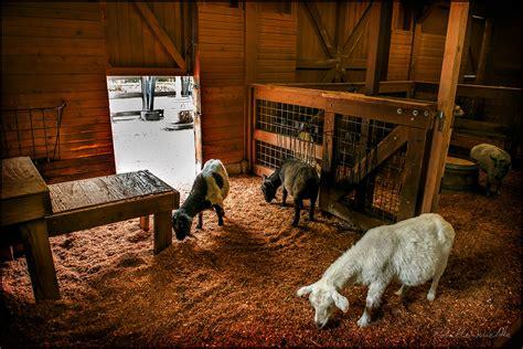 Inside A Barn inside the barn