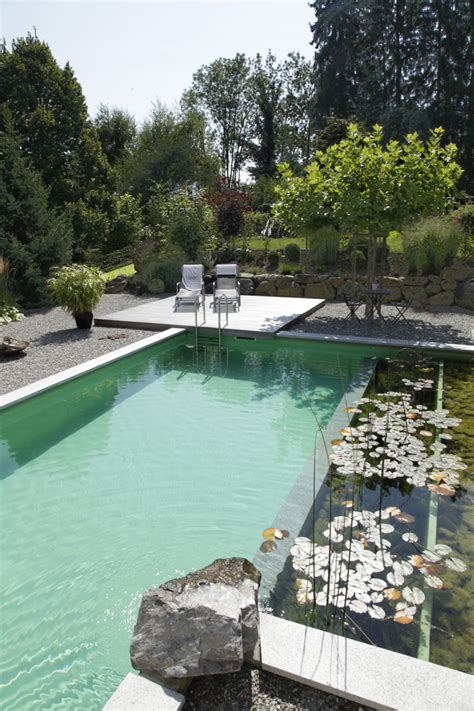 modern pools design with natural creative ideas natural swimming pools by biotop the new eco trend