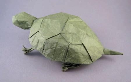 origami tutorial turtle origami turtle probuch