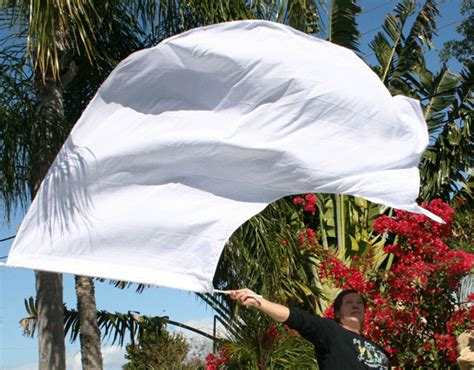 Super Swing Wing Flags Large Banner Praise Flags Worship