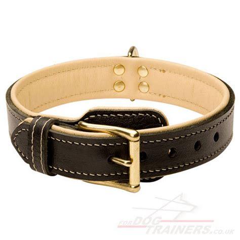 padded collars padded collar royal design soft collar 163 48 36